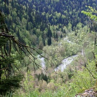 Река Лашипсы