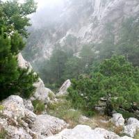 Склон горы
