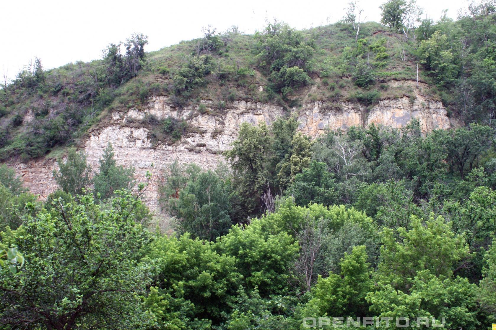 Щербаковская дуга <p>Побережье Волги, 130Км от Волгограда, Камышинский район</p>