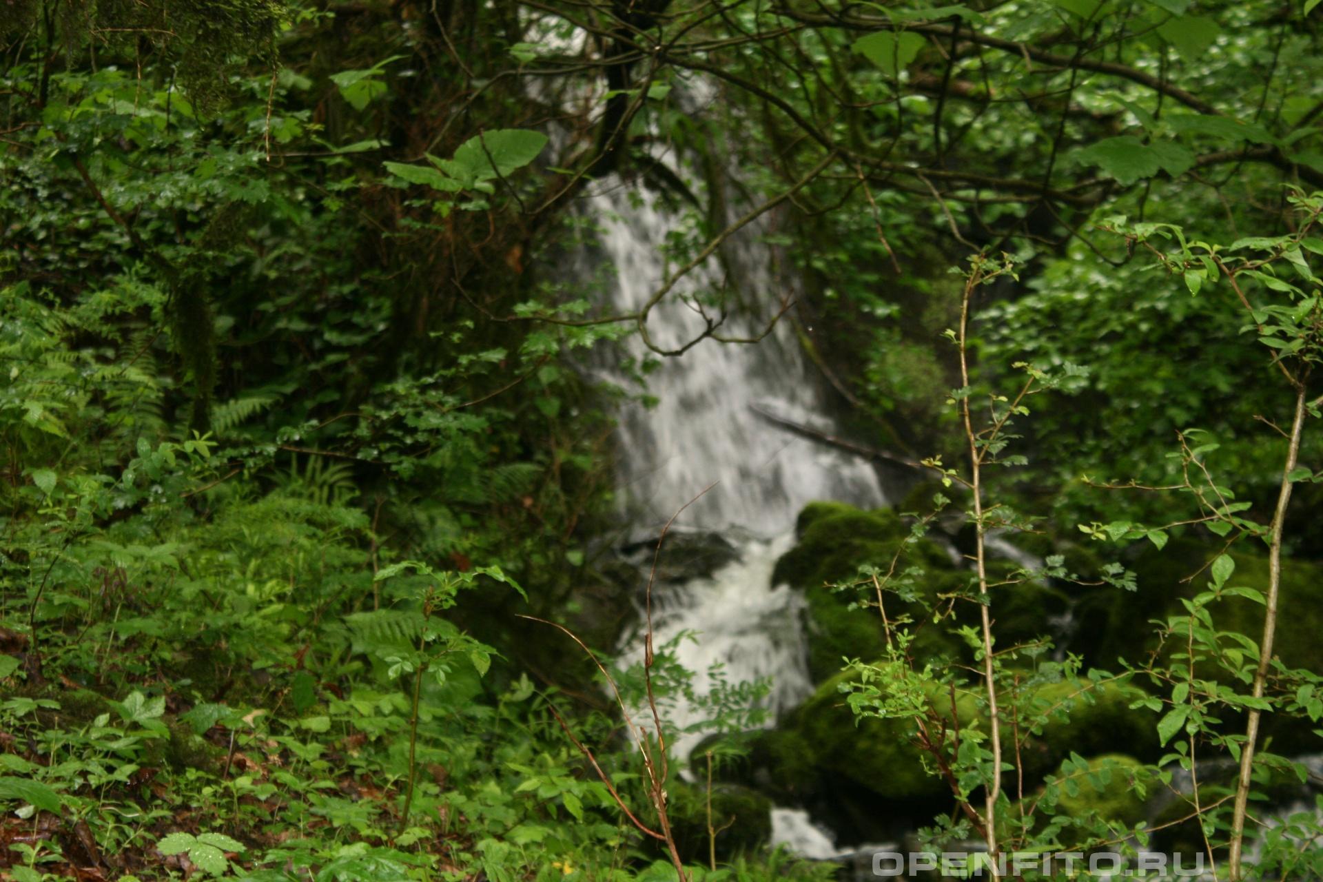 Водопад Весна в субтропиках