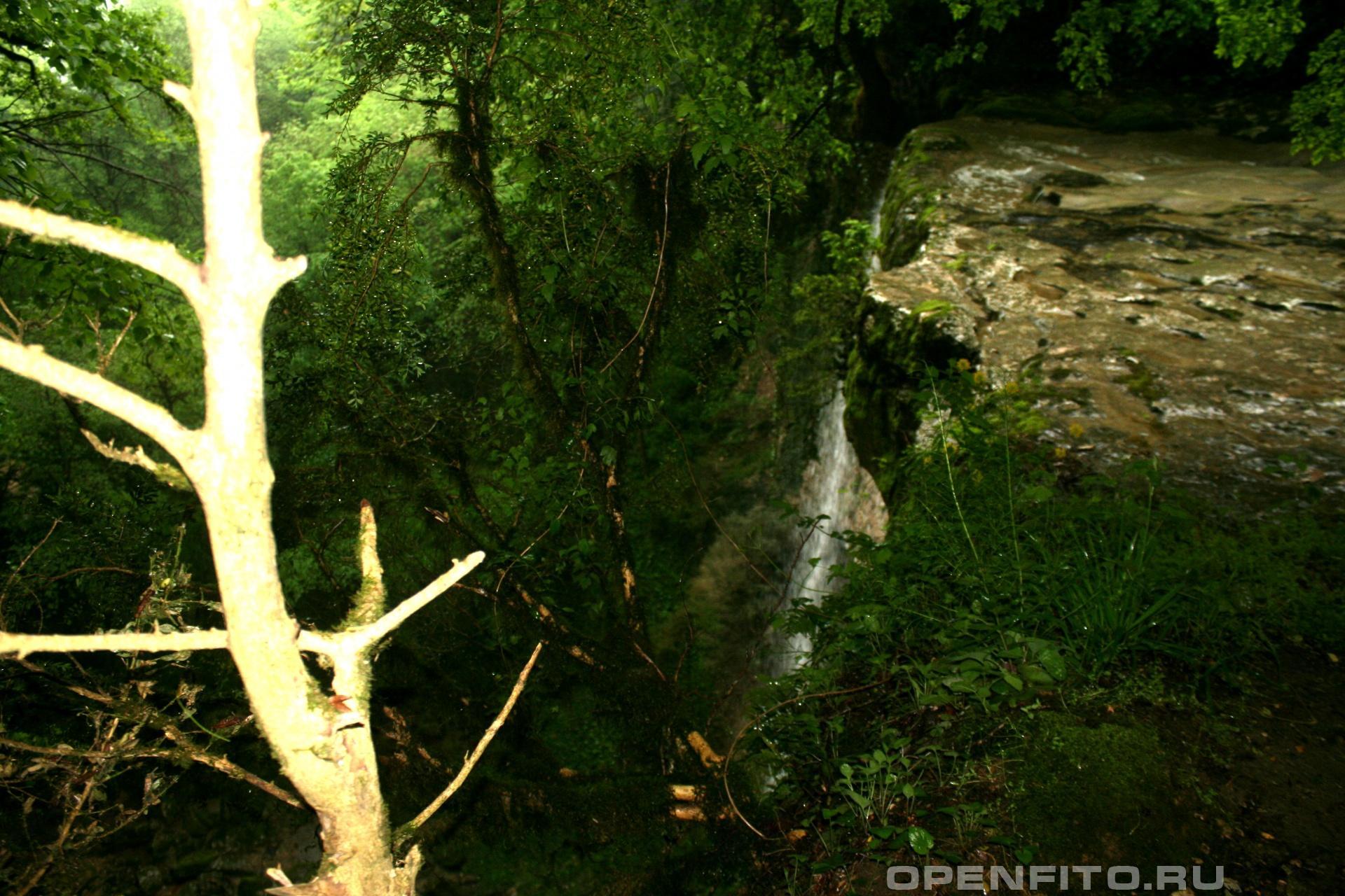 Шакуранский водопад вид сверху, Абхазия, сухумский район