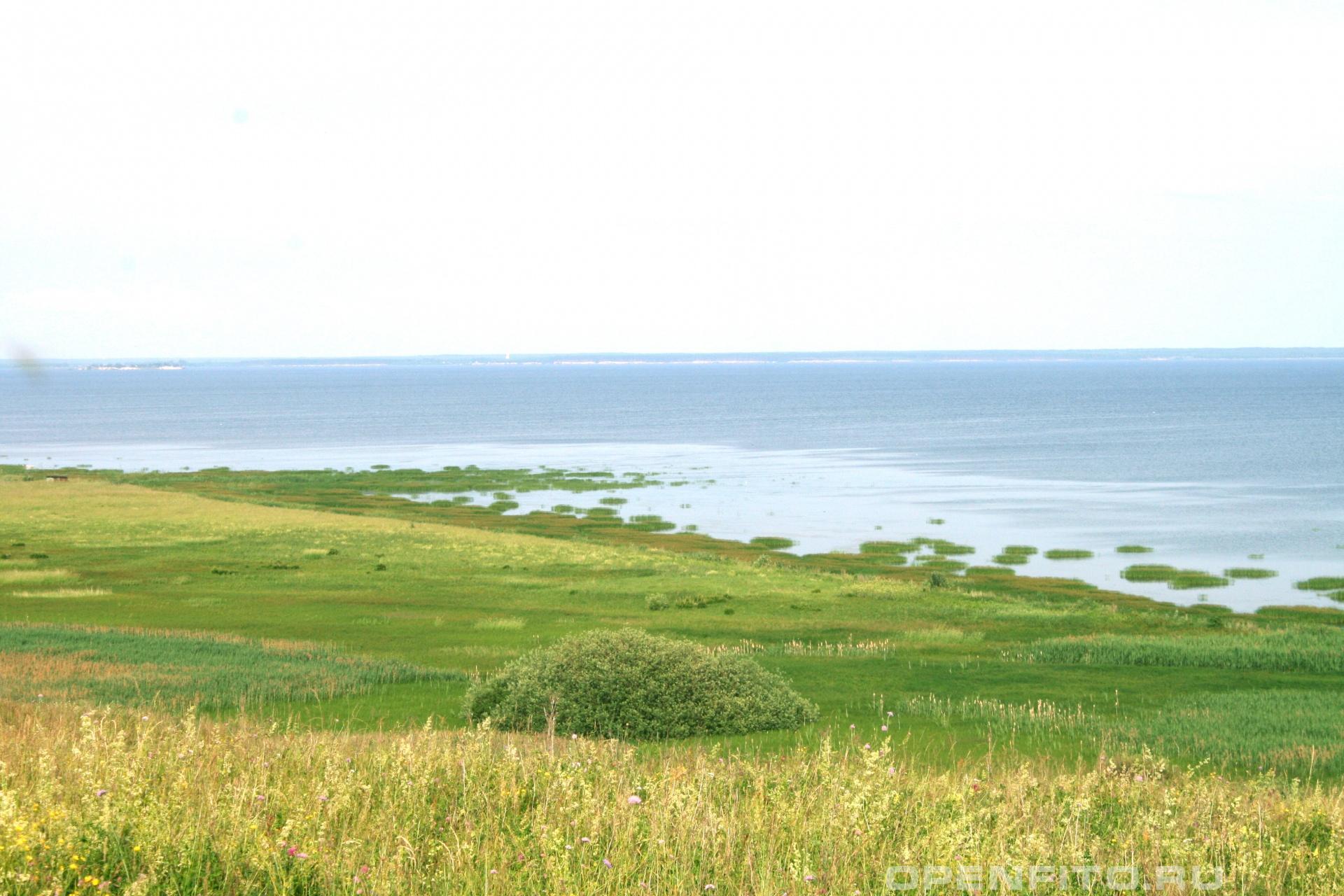 Берег Волги Юрьевецкий район Ивановской области