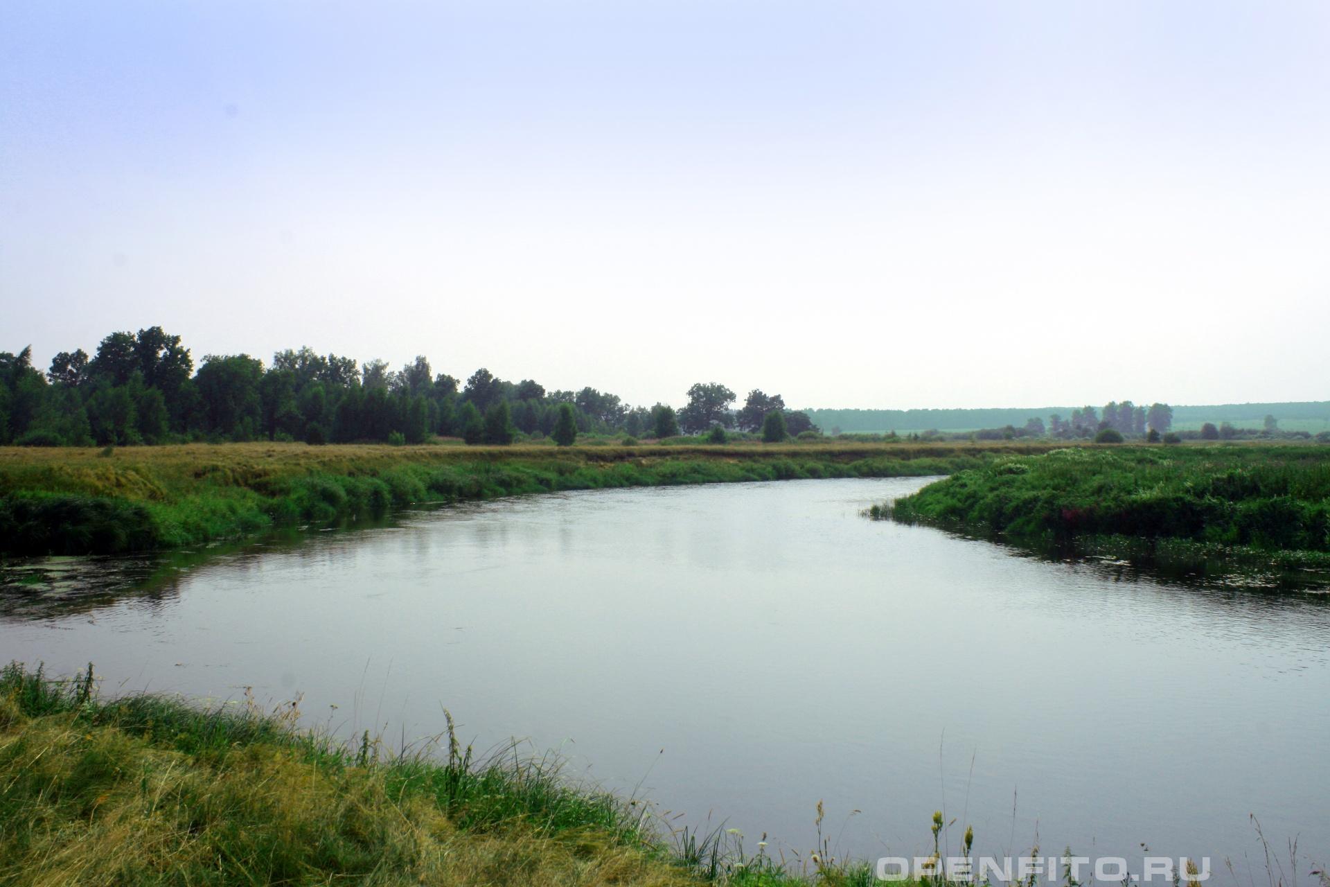 Река Уводь село Меховицы Савинского района Ивановской области