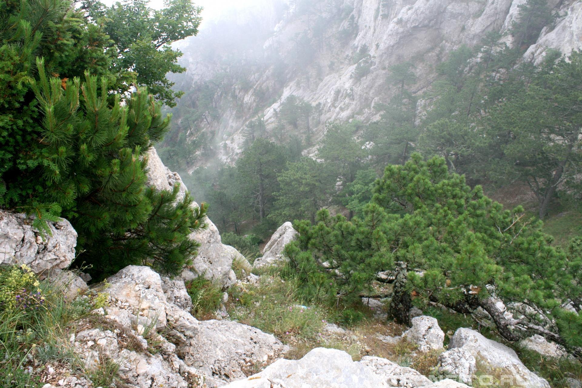 Склон горы Республика Крым