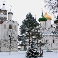 фото Спасо-Евфимиев монастырь